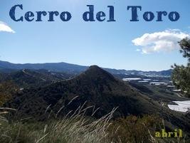 Cerro del Toro de Motril